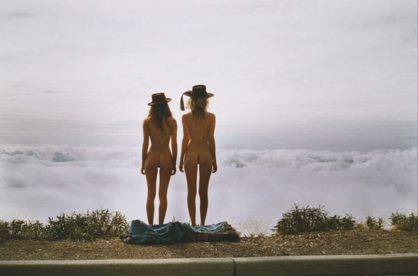two models in nature - The Magda Experience