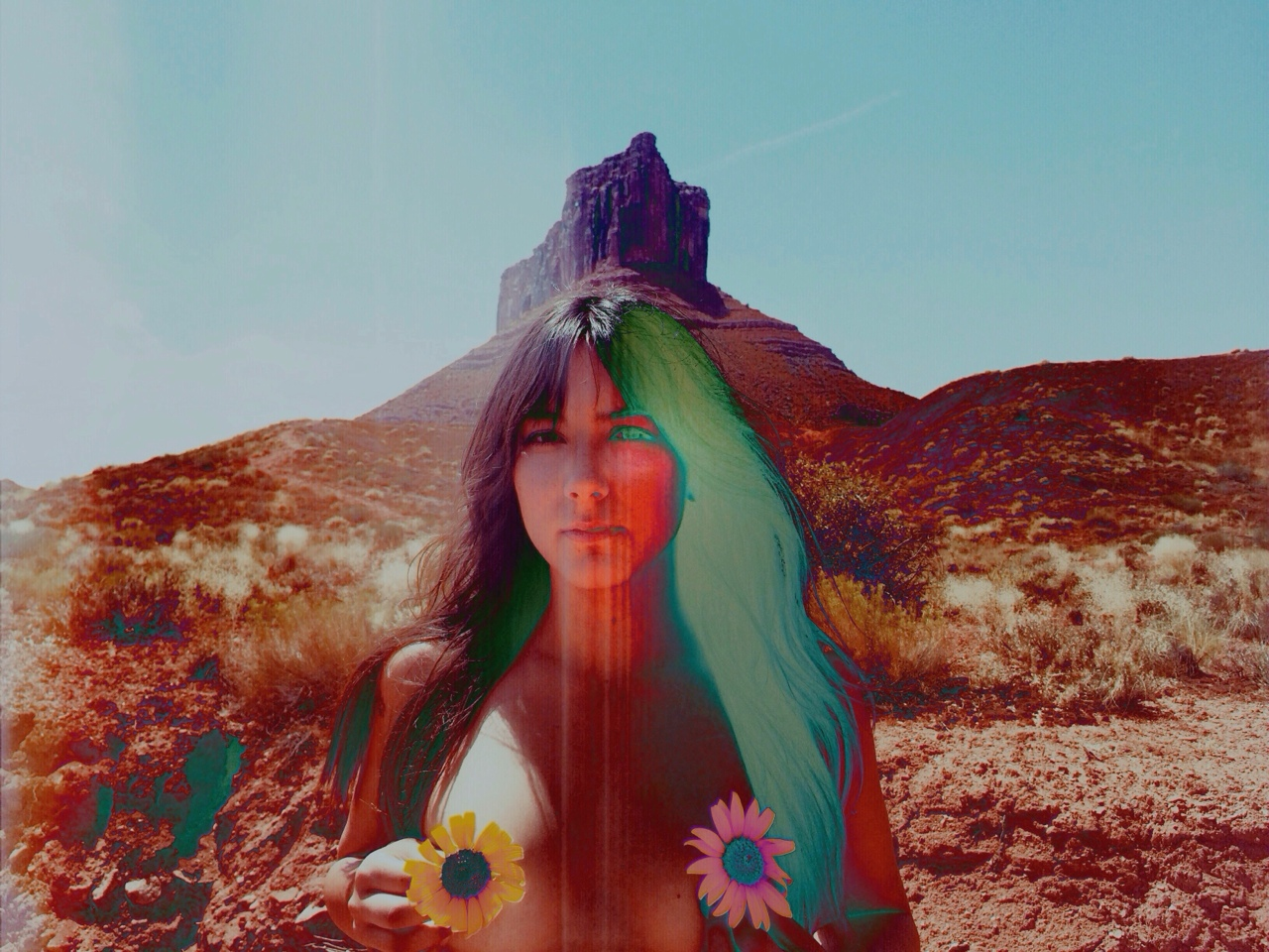 photography by Dana Trippe