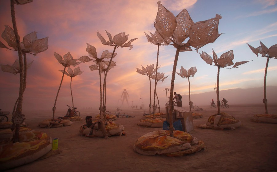 Burning Man 2014 - not from this earth