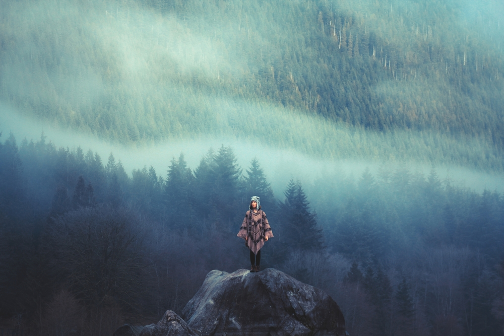 nature by Elizabeth Gadd