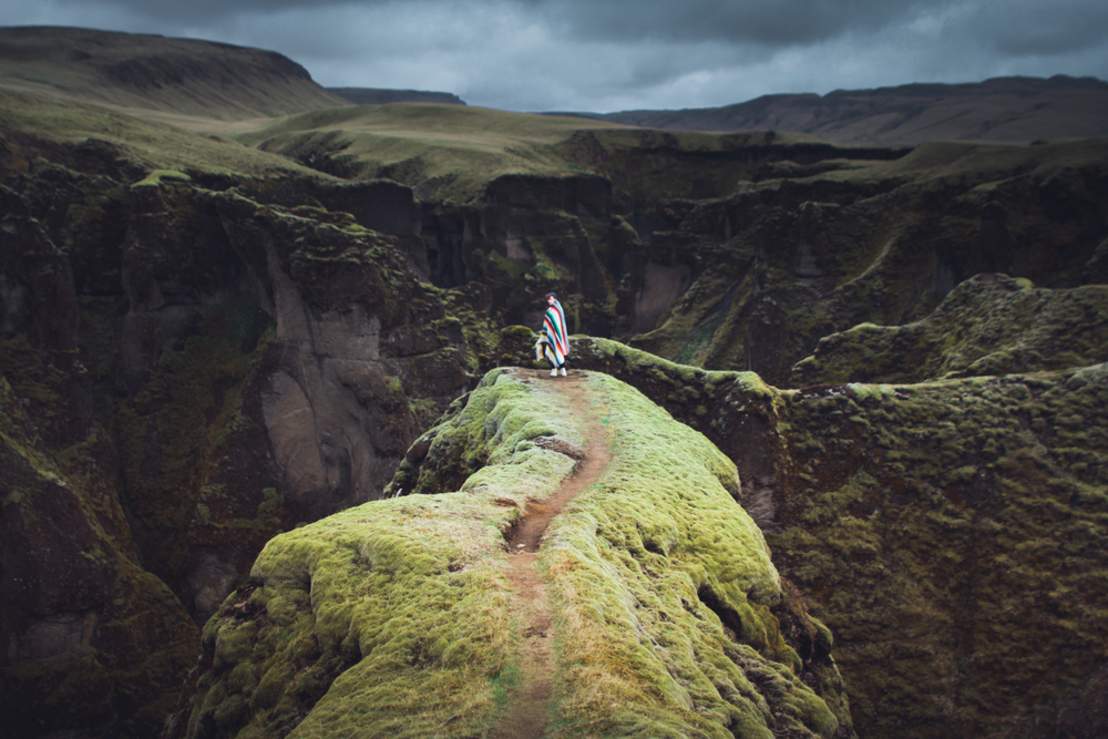 wilderness by Elizabeth Gadd