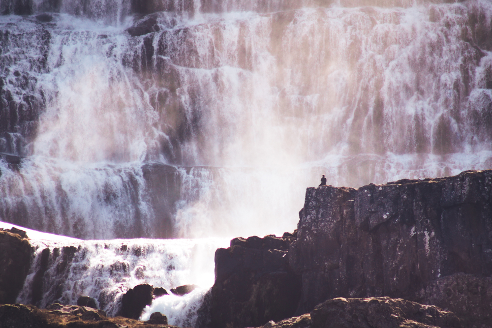 waterfalls by Elizabeth Gadd
