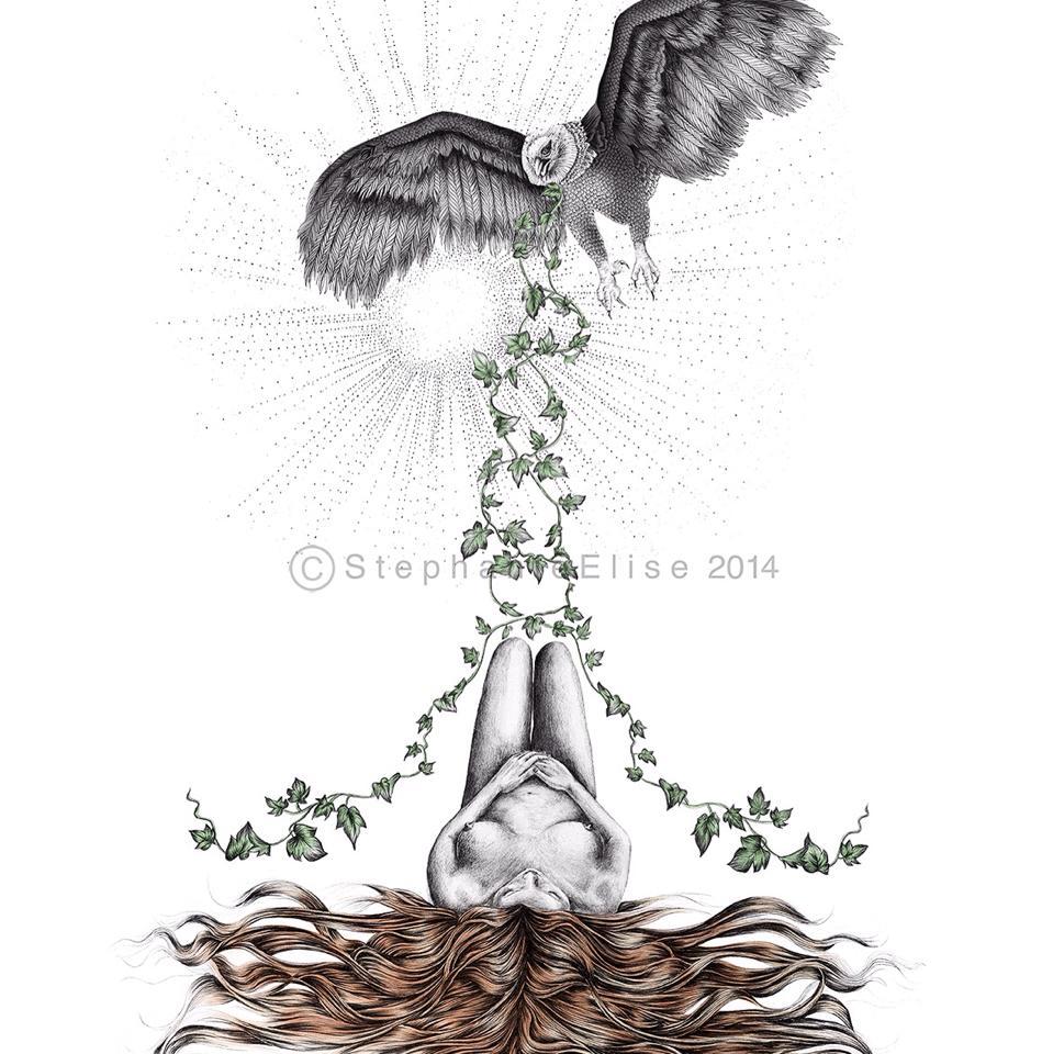 Stephanie Elise Illustration