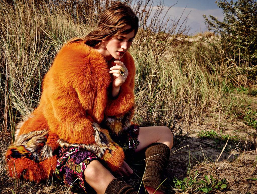 Wildlife - Crista Cober