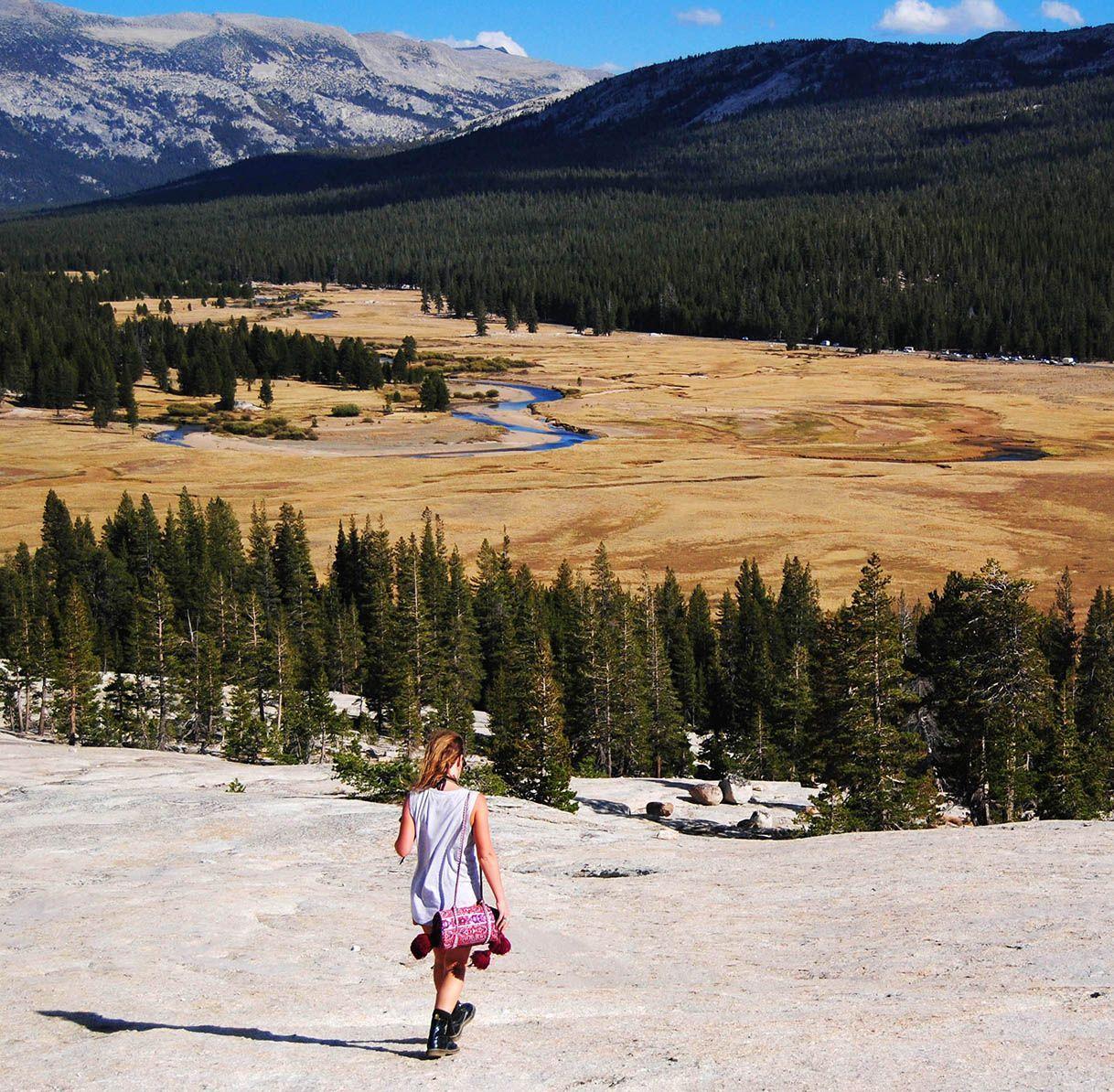 Wandering Folk - trip