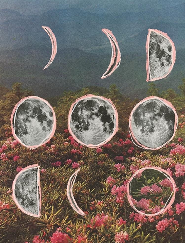 collages by Sarah Eisenlohr