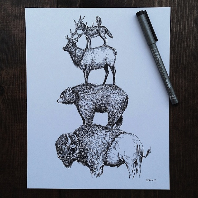 Sam Larson - animals