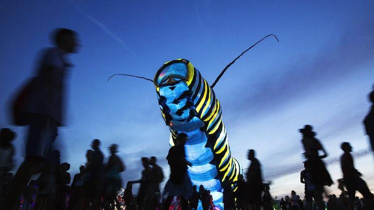 Coachella 2015 - caterpillar